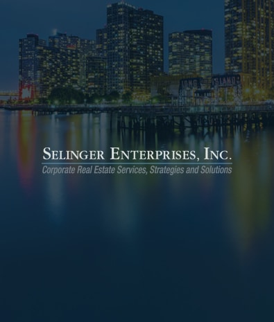 2017 Wordpress Design Portfolio- Selinger Enterprises Featured Image